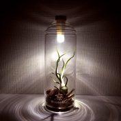 bottlelight-lifestyleshot