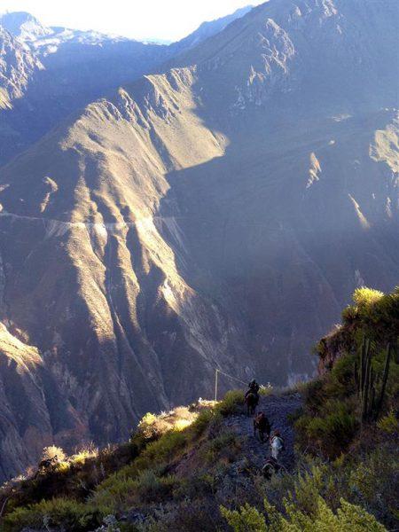 Peru-colca-canyon-trail