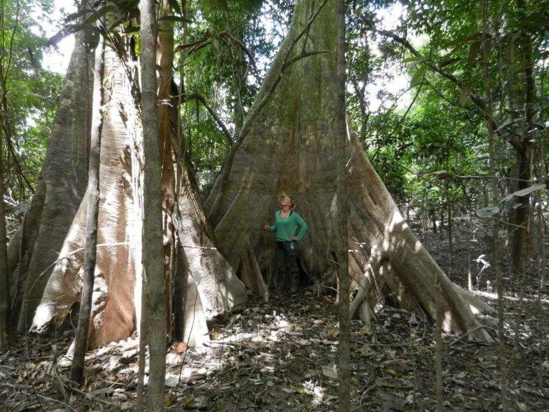 Peru-jungle-trek-amazone