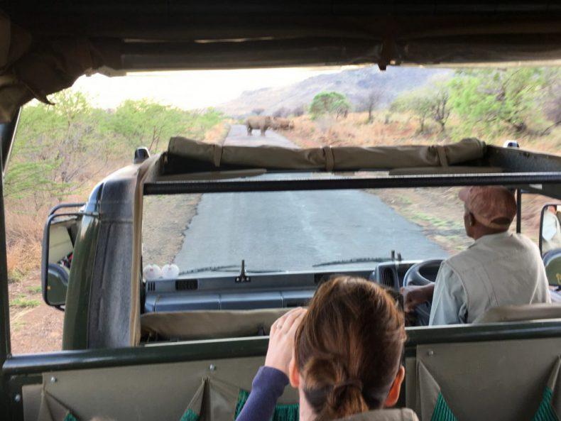 South-Africa-Pilanesberg