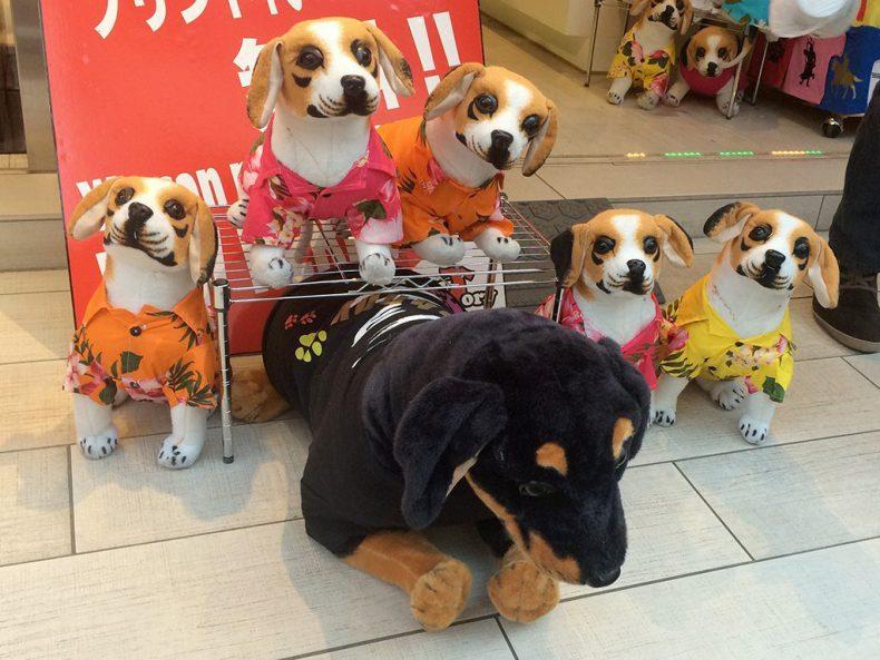 Japan-Tokyo-dog-lovers