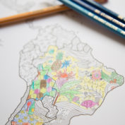 colour-the-world-map